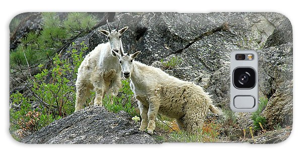 Idaho Mountain Goats Galaxy Case