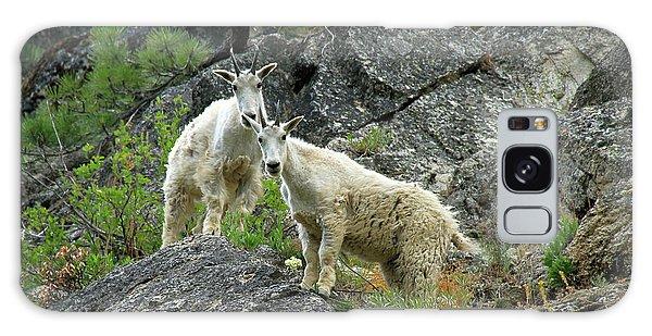 Idaho Mountain Goats Galaxy Case