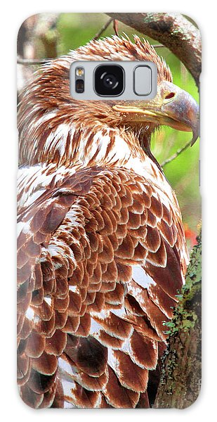 Immature Eagle Galaxy Case