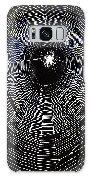 In The Web Galaxy Case