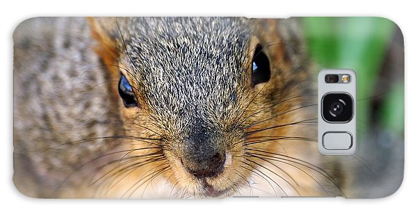 In Your Face Fox Squirrel Galaxy Case