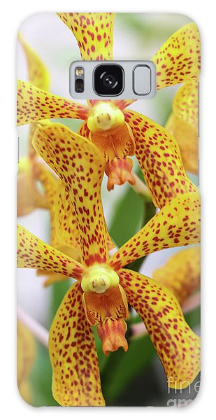 Intriguing Yellow Spider Orchids Galaxy Case