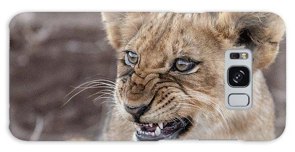 Irritated Lion Cub Galaxy Case