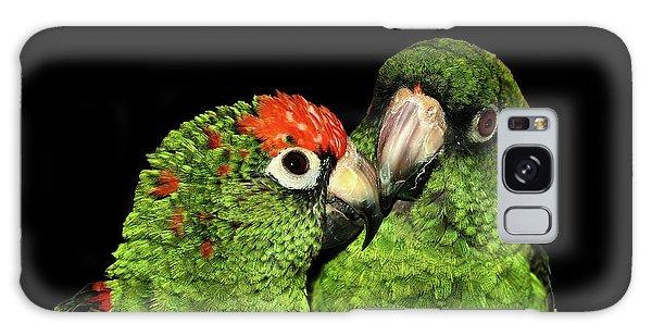 Jardine's Parrots Galaxy Case