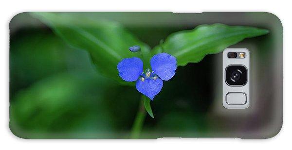 Flora Galaxy Case - Joy To The World by Az Jackson