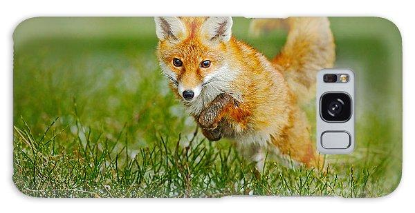 Furry Galaxy Case - Jumping Red Fox, Vulpes Vulpes by Ondrej Prosicky