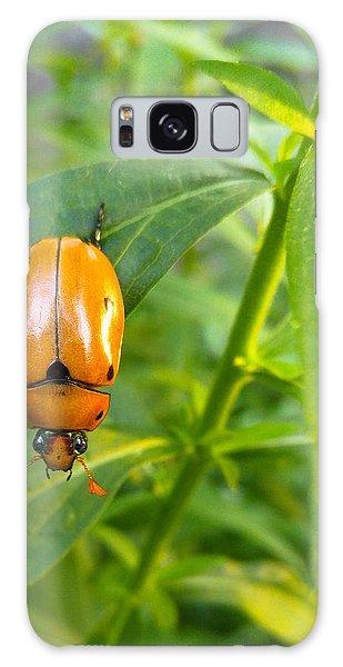 June Bug Galaxy Case