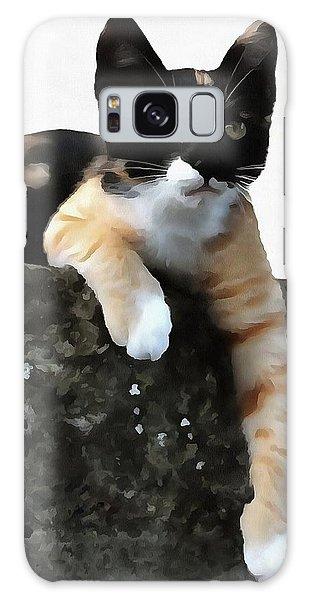 Just Chillin Tricolor Cat Galaxy Case