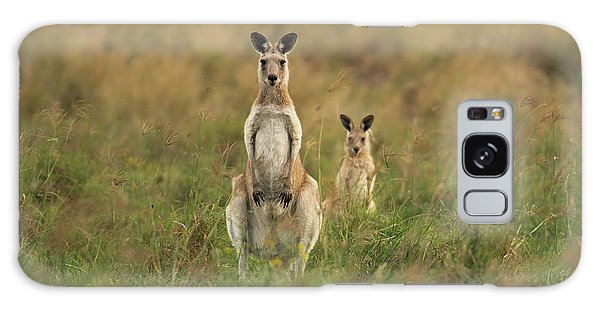 Kangaroos In The Countryside Galaxy Case