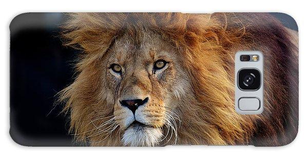 King Lion Galaxy Case