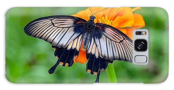 Kite Swallowtail  Galaxy Case