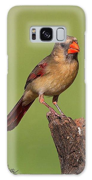Lady Cardinal Galaxy Case