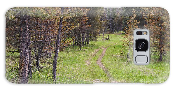 No People Galaxy Case - Landscape Image Of Hiking Trail In The by Brian A Smith