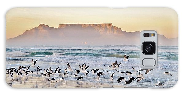 Seagulls Galaxy Case - Landscape With Beach And Table Mountain by Werner Lehmann