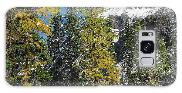 Boreal Forest Galaxy Case - Larch Trees Below Mount Huber, Yoho by Tim Fitzharris
