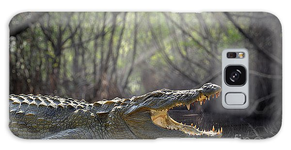 Powerful Galaxy Case - Large Crocodile, National Park, Sri by Volodymyr Burdiak