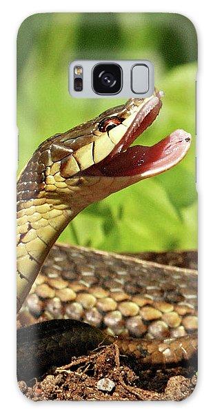Laughing Snake Galaxy Case