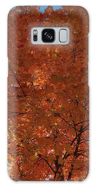 Leaves Of Fire Galaxy Case