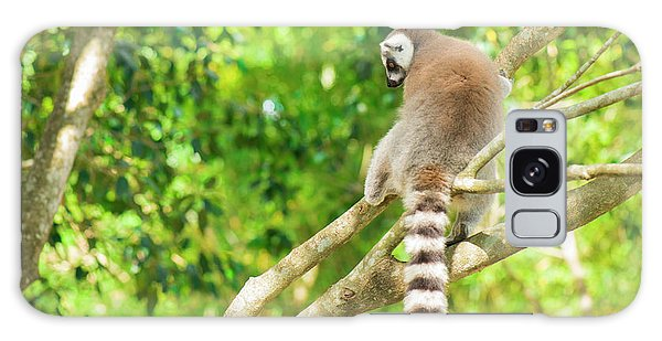 Lemur By Itself In A Tree During The Day. Galaxy Case