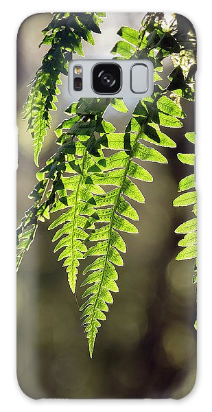 Galaxy Case featuring the photograph Licorice Fern by Whitney Goodey