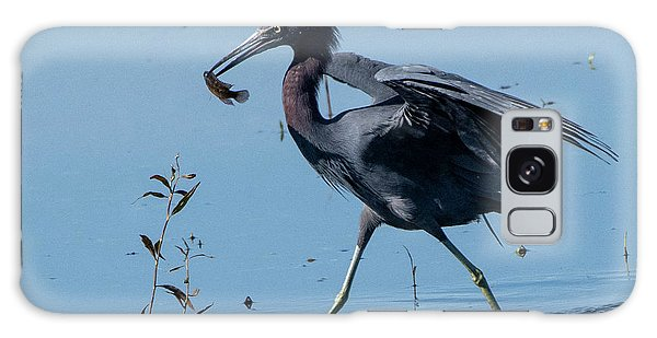 Little Blue Heron With Fish Galaxy Case