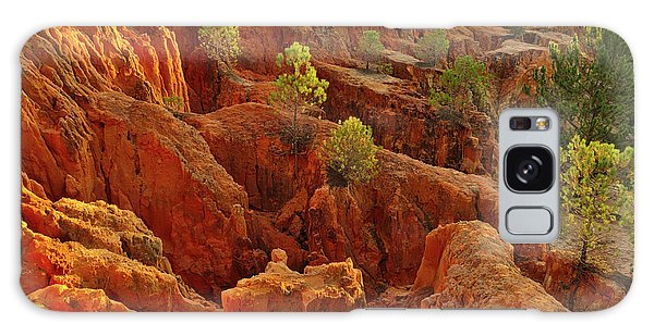 Little Pine Trees Growing On The Valley Cliffs Galaxy Case