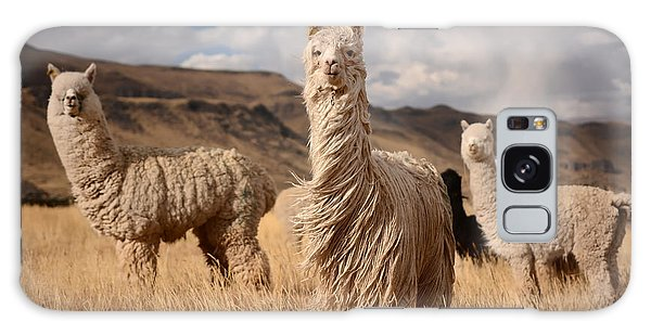 Pasture Galaxy Case - Llamas Alpaca In Andes Mountains, Peru by Pavel Svoboda Photography