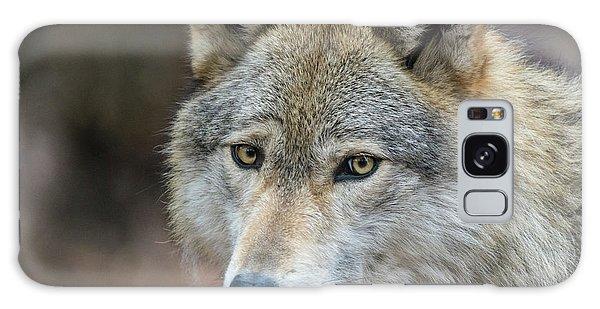 Lone Wolf Galaxy Case