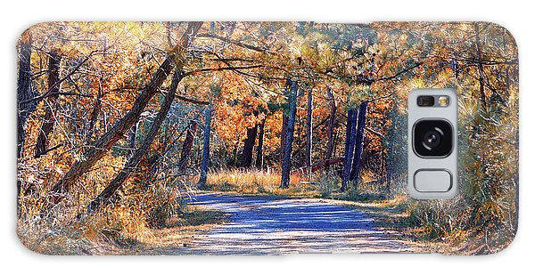 Galaxy Case featuring the photograph Long And Winding Road At Gordon's Pond by Bill Swartwout Fine Art Photography