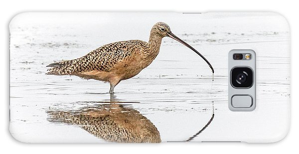 Long-billed Curlew Galaxy Case