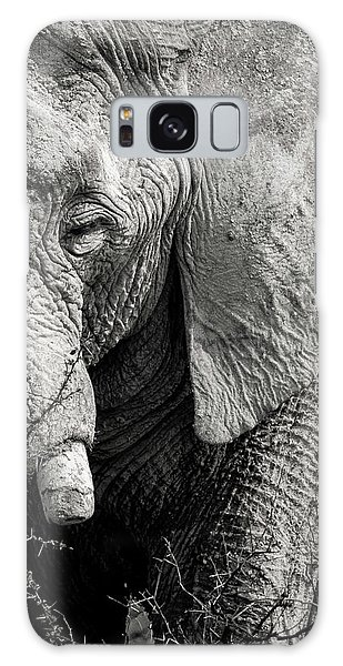 Look Of An Elephant Galaxy Case