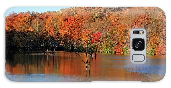 Galaxy Case featuring the photograph Looking Out Over Alum Creek by Angela Murdock