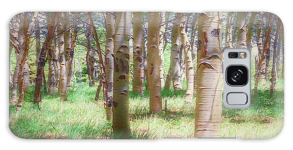 Lost In The Woods - Kenosha Pass, Colorado Galaxy Case