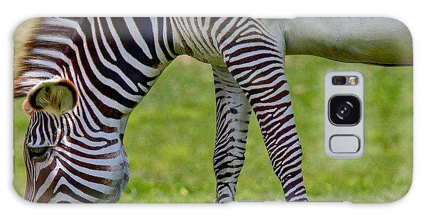 Love Zebras Galaxy Case