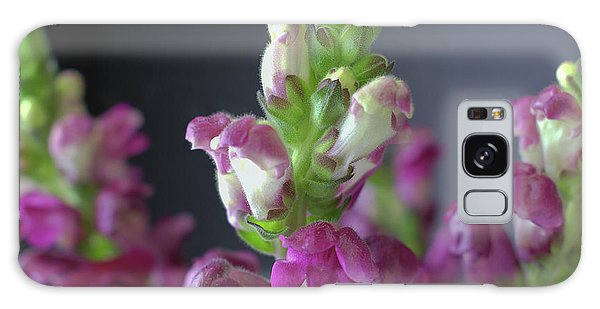 Conyers Galaxy Case - Lovely Lupine by Cory Brewington