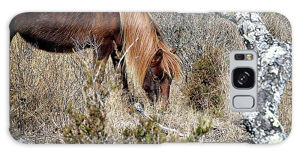 Galaxy Case featuring the photograph Lunchtime For Assateague's Gokey Go Go Bones by Bill Swartwout Fine Art Photography