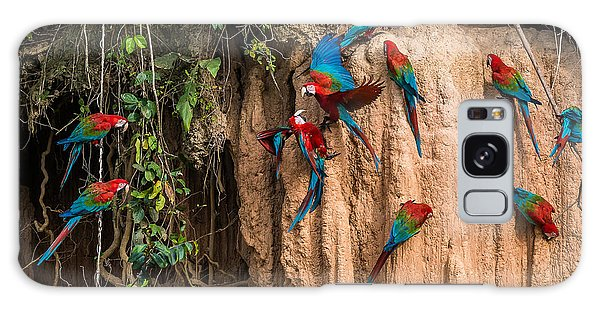 Macaw Galaxy Case - Macaws In Clay Lick In The Peruvian by Ostill Is Franck Camhi