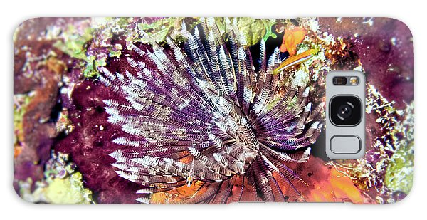 Magnificent Feather Duster Galaxy Case