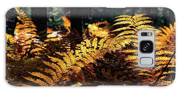 Maine Autumn Ferns Galaxy Case