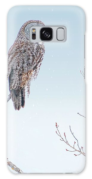 Majestic Great Gray Owl Galaxy Case