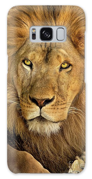 Male African Lion Portrait Wildlife Rescue Galaxy Case