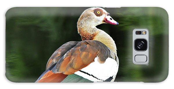 Male Egyptian Goose Galaxy Case