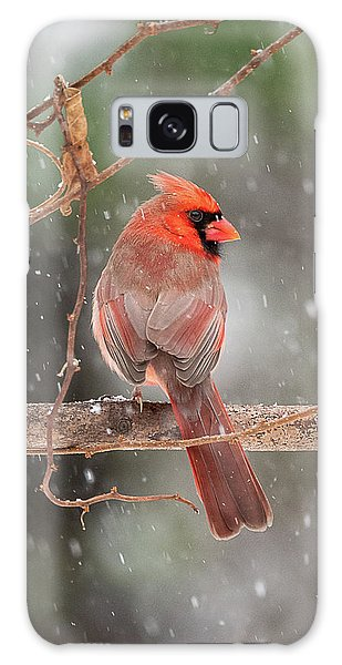 Male Red Cardinal Snowstorm Galaxy Case