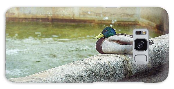Mallard Resting On The Fountain Of The Fallen Angel In The Retiro Park - Madrid, Spain Galaxy Case