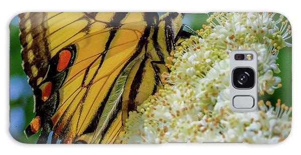 Manassas Butterfly Galaxy Case
