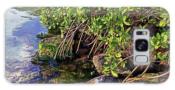 Mangrove Bath Galaxy Case