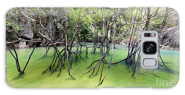 Mangrove Galaxy Case - Mangrove Forest by Banana Republic Images