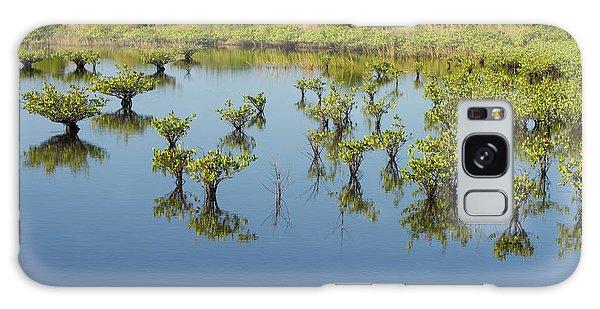 Mangrove Nursery Galaxy Case