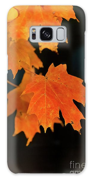 Maple-1 Galaxy Case
