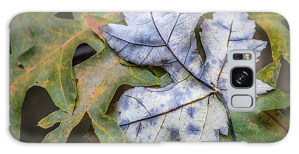 Maple And Oak Galaxy Case